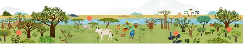 Défi Ecosia