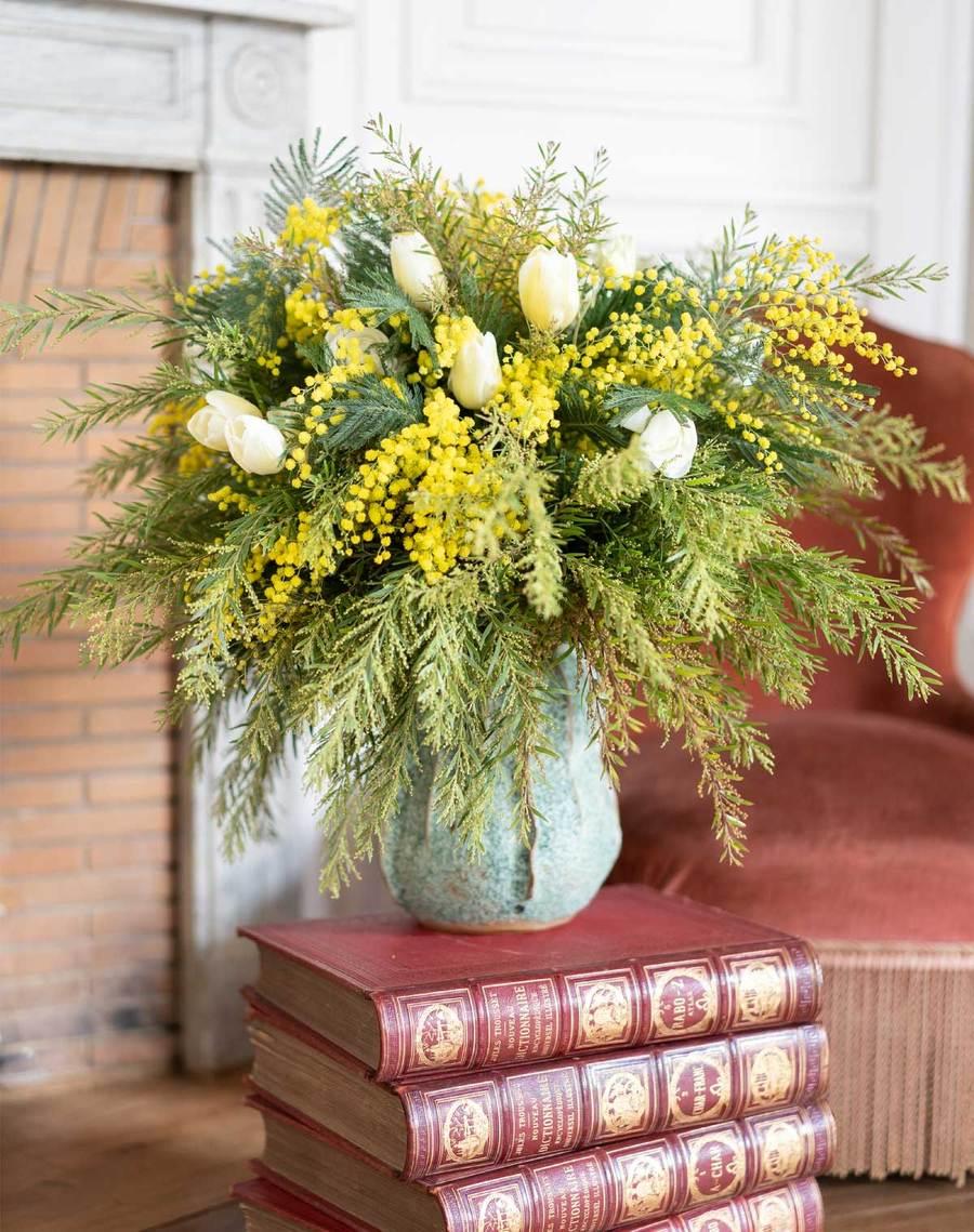 mimosa-fleurs d'ici
