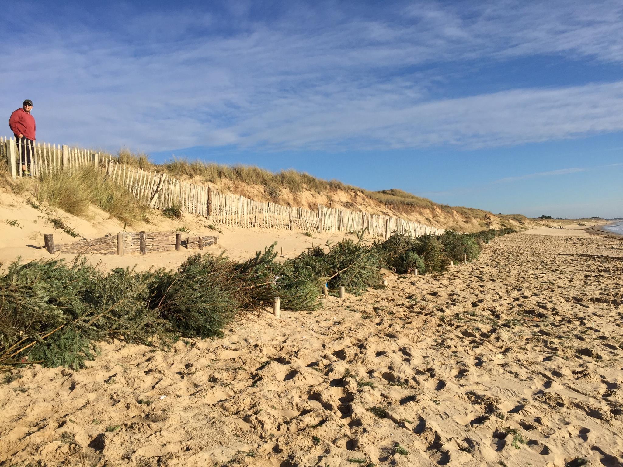 ile-de-re-dunes-attitudes